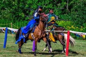 Silver Knights Jousting